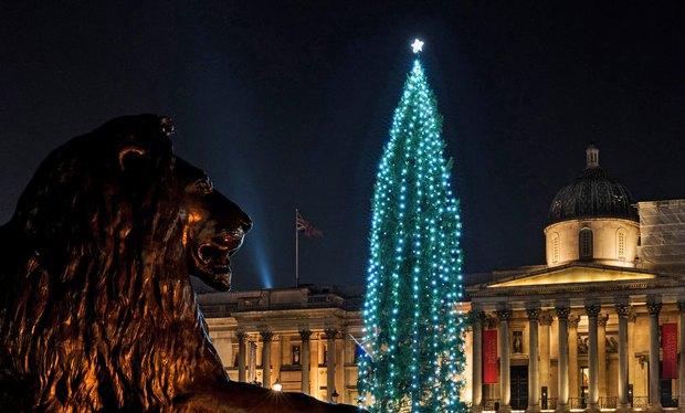 Главная елка Великобритании, Лондон