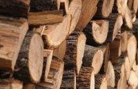 Закон о запрете на вывоз леса из Украины не соответствует ЗСТ с ЕС, - евродепутат