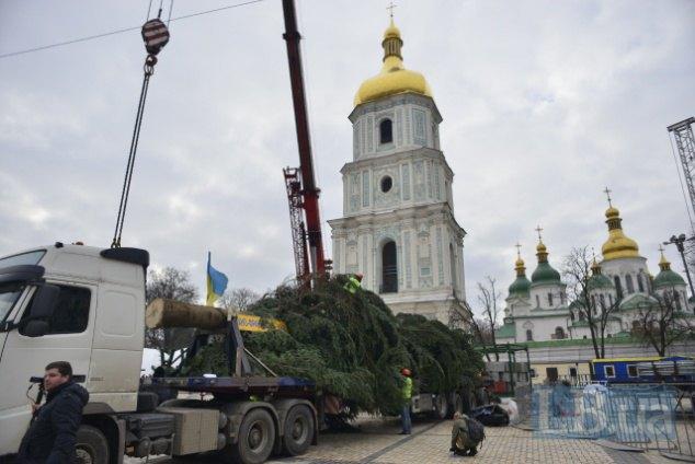 Завтра наСофиевскую площадь привезут главную елку страны