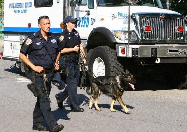 Нью-йоркская полиция