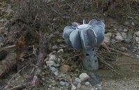 Боевики за день 18 раз обстреляли позиции военных на Донбассе