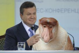 Януковичу в Брунее подарили длинноносую обезьянку
