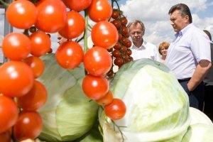 Янукович предложил России кормить мир вместе