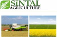 У крупного украинского агрохолдинга проблемы