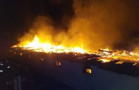 Семь тысяч кур погибли из-за пожара на ферме возле Киева