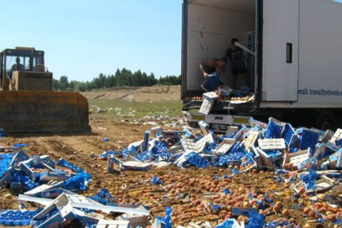Росія зсерпня знищила майже 800 тонн продуктів