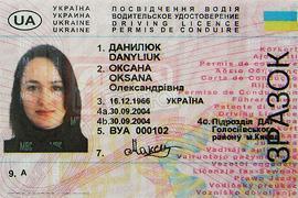 Могилев хочет выдавать права на 10 лет