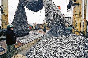 УНП критикует Минэкономики за отмену сертификации рыбы и икры
