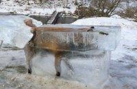 В Германии охотник установил на крыльце отеля замерзшую в Дунае лису