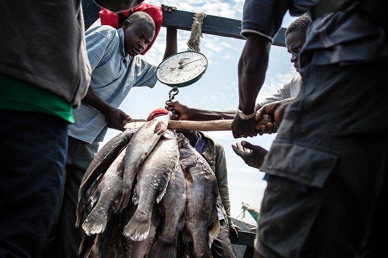 Рыбаки продают улов