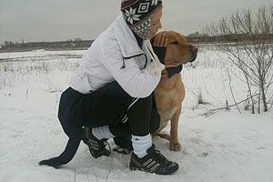 Тимошенко переживает за своих собак