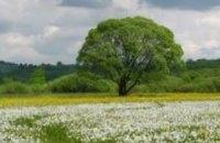 Бюджетный кодекс, Байден и экологический туризм