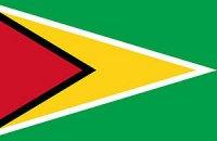 Украина заинтересована в расширении торгово-экономического сотрудничества с Гайаной