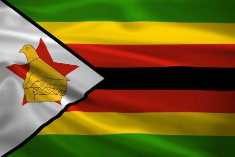 ВЗимбабве выпустили суррогаты долларов США