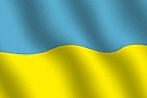 Кабмин предлагает запретить использование государственного флага в символике партий