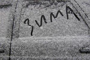 """Азаров: на """"борьбу с зимой"""" потрачено 600 млн гривен"""