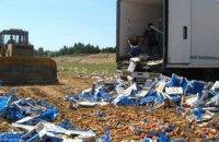 За год Россия уничтожила 7,5 тыс. тонн санкционных продуктов