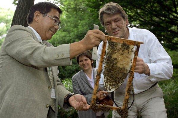 Президент Ющенко посприяв ще більшій сакралізації меду всередині країни