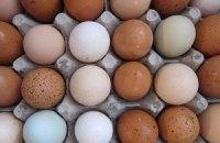 В Цушка звону перевірять виробників яєць