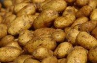 Россия отказалась от украинской картошки