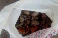 В ходе спецоперации в Житомирской области изъяли 340 кг янтаря