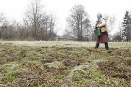 Иностранцы не смогут покупать украинские земли