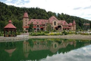 Очередной ремонт резиденции Януковича обойдется бюджету в 21 млн грн