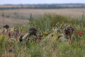 Пограничники предотвратили проникновение из РФ двух групп боевиков