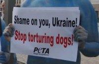 Защитники животных взялись за Януковича