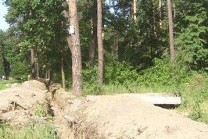 Янукович пообещал защитить лес под Киевом