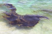 Море в Крыму покрылось неизвестными пятнами