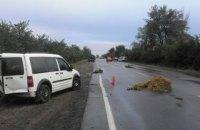 Трое взрослых и двое детей травмированы из-за ДТП в Николаевской области