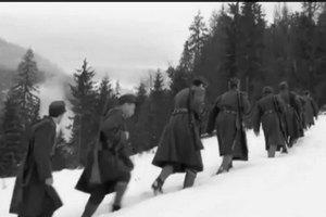 Порошенко приказал праздновать победу Сечевых Стрельцов на горе Макивка