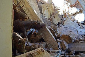 В Донецке разрушен один из самых больших музеев Украины