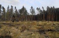 Автомайдан обнародовал снимки масштабов незаконной добычи янтаря