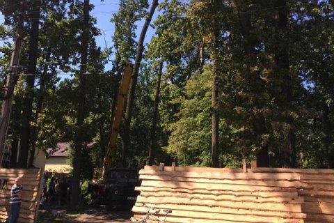 ГПУ задержала участника схемы «откатов» при экспорте древесины времен Януковича