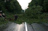 Ураган заблокировал автостраду в Западной Украине