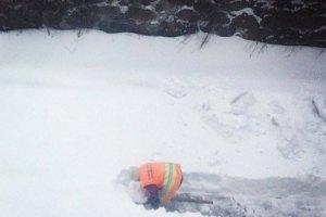 Сын Януковича благодарен киевлянам за расчистку дорог и пошутил о паводке