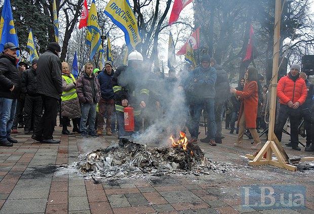 Протестующие сожгли чучело кролика