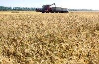 Аграрный фонд направил 1,5 млрд гривен на форвардную программу поддержки сельхозпроизводителей