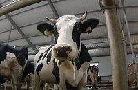 Днепропетровское сельскохозяйственное предприятие заявило о рейдерском захвате