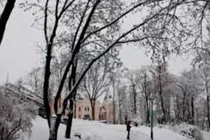В четверг в Киеве до -8 градусов