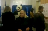 На выборах в Верховную Раду проголосовала панда