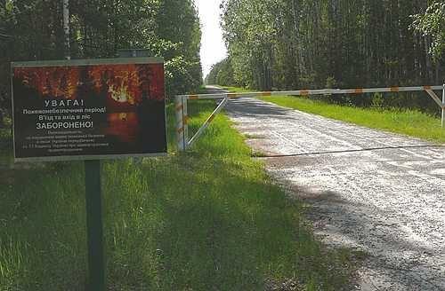 Лесхоз близ Сухолучья - запретная зона