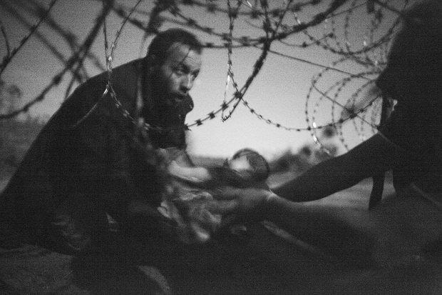 """""""Фотографією року"""" став знімок біженця з дитиною на угорсько-сербському кордоні (фото)"""