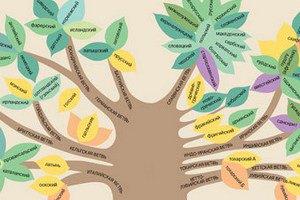 Ученые установили родину индоевропейских языков