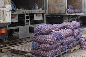 В Одессе кандидат решил подкупить избирателей дешевым картофелем