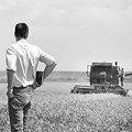 Чи потрібно підтримувати українських фермерів?