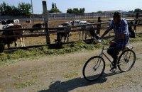 """Жан-Жак Эрве: """"В Украине не уважают простых людей, которые живут в деревне"""""""
