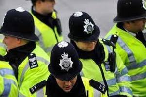 Лондонская полиция планирует обучить птиц перехвату дронов